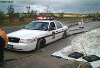 Rendőrök botlásai a nagyvilágból